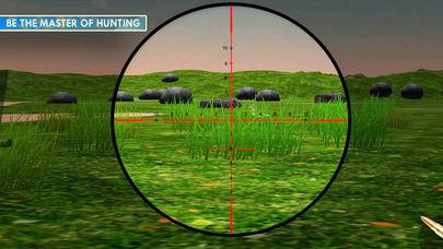 狩猎鸭子截图