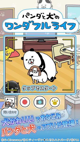 熊猫与狗狗的美好人生截图