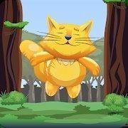 小猫想上天