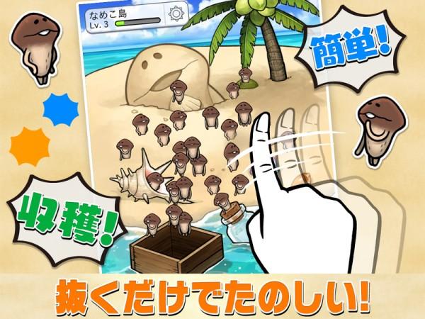 滑子菇栽培截图