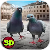 城市之鸽模拟3D