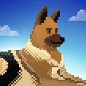 狗狗收容所救援