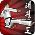 跆拳道模拟挑战赛