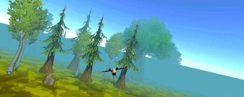 森林飞鸟模拟