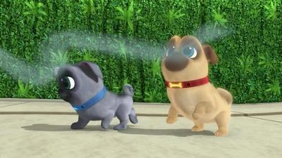 可爱小狗结伴跑世界截图