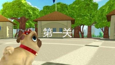 可爱小狗结伴跑世界