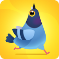 神奇啄木鸟