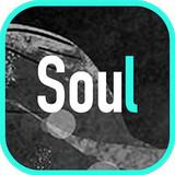 soul3.0.1安卓版