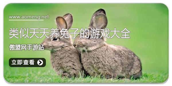 类似天天养兔子