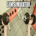健身房模拟器吃鸡版