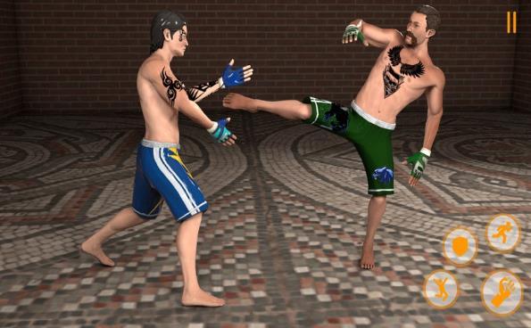 终极拳击MMA战士