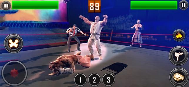 真正的摔跤2020