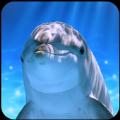 水龙头海豚