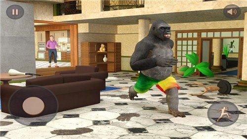 恶作剧的大猩猩