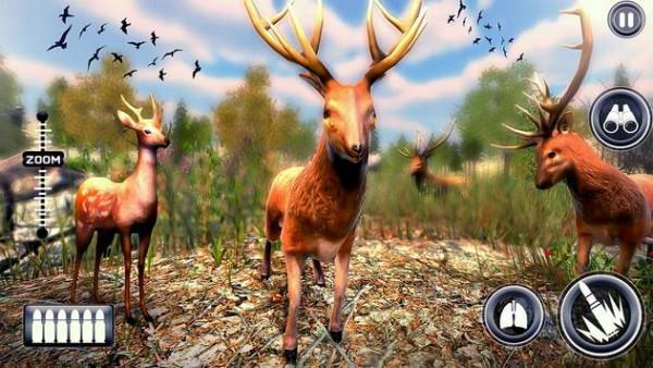 野生动物狩猎达人