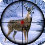 荒野猎人3D