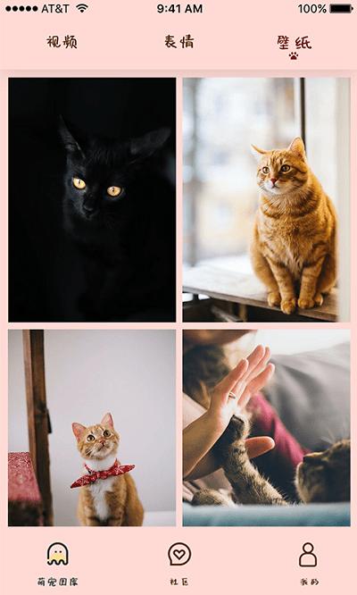 喵喵撸猫截图