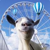 模拟山羊游乐园